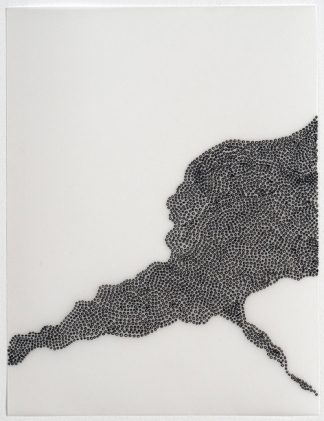 Sharyn O'Mara, Untitled (Meander), 2015. Photo courtesy of the artist's website.